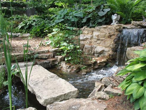Shared garden photo