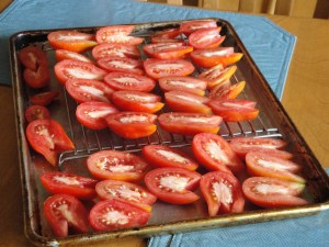 tomatoes for drying