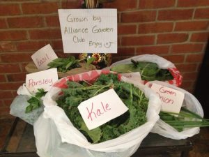 Vegetables grow very well in the garden boxes. Many gardeners grow enough to share with friends.