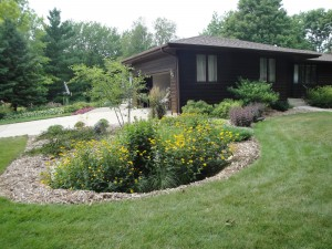 A rain garden reduces run-off, provides habitat for insects and looks beautiful, too.