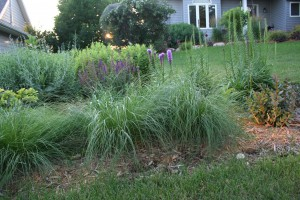 A prairie planting in the front yard is edged with graceful prairie dropseed.