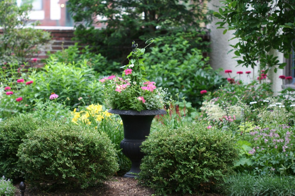 An urn planted with annuals and a fine adds height to the shrub and perennial border.