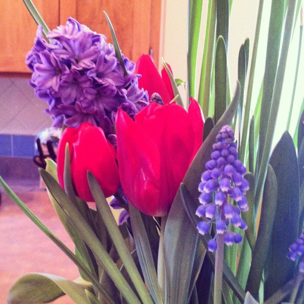 First time forcing bulbs? Consider buying a kit from a local nursery. They are usually pre-planted and pre-chilled.
