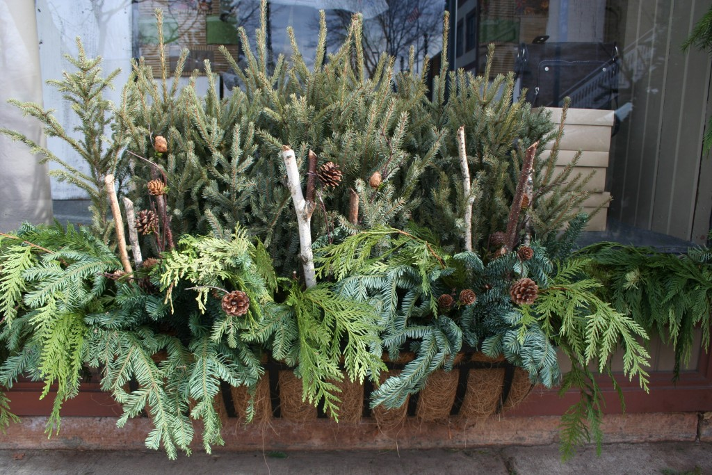 Sometimes greens and a few natural elements are all that are needed for a pretty holiday display.