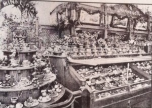 It all started with fruit. Here is a part of the Minnesota fruit display at the 1893 World's Fair in Chicago.