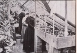 MSHS has long been a supporter of women in horticulture. Here members of a summer class in 1896 put cuttings into a propagation bed.