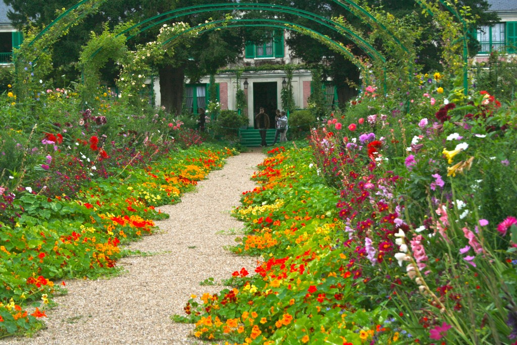 By the end of summer, these nasturtiums will fill the entire walkway in Monet's garden.