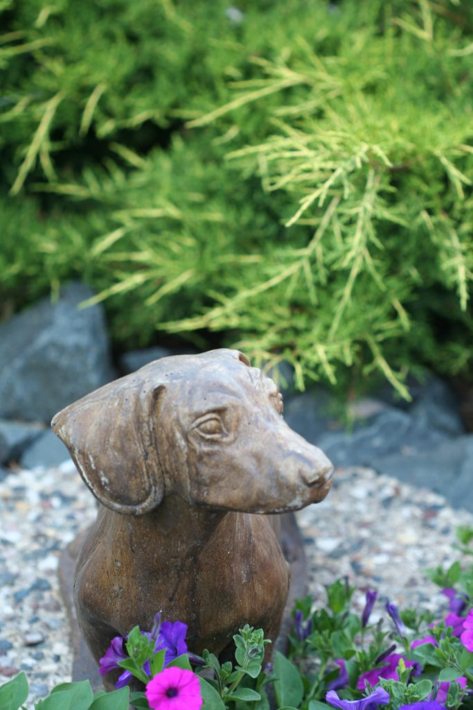 A beloved dog is honored in the garden.
