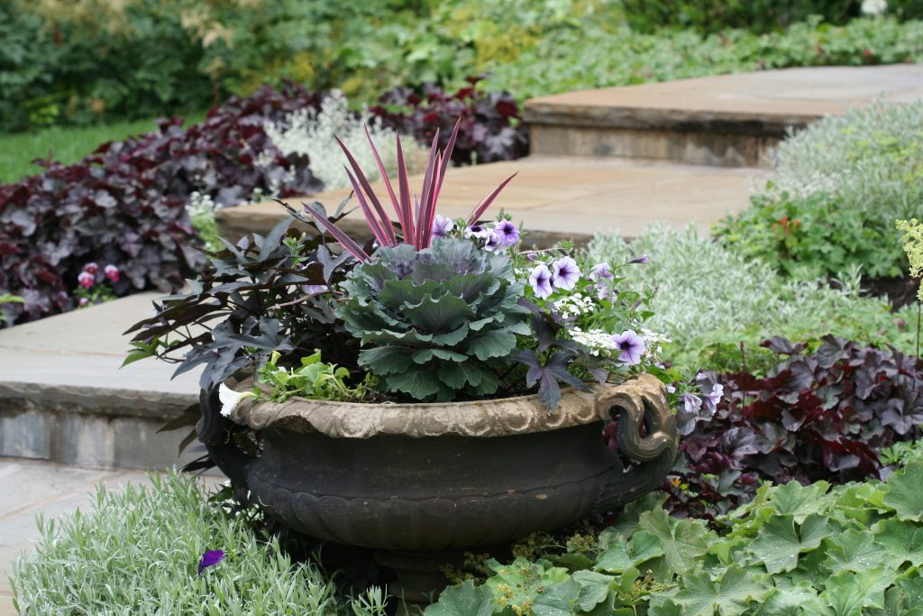 Dark-leaved huechera and lavender tinged ornamental kale add depth to this entry garden. The spike plant echoes the dark theme.