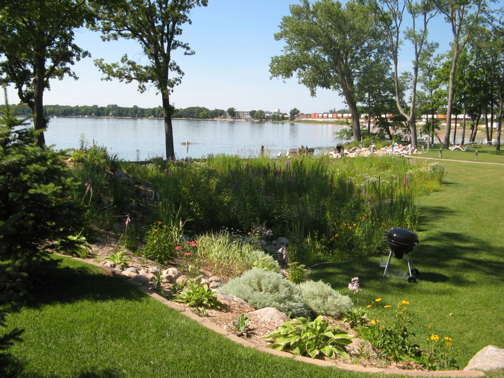Rain gardens are a great way to conserve water. Photo courtesy of Terry