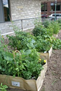 MSHS Garden-in-a-Box program provides a garden box, soil, plants and seeds to low-income gardeners.