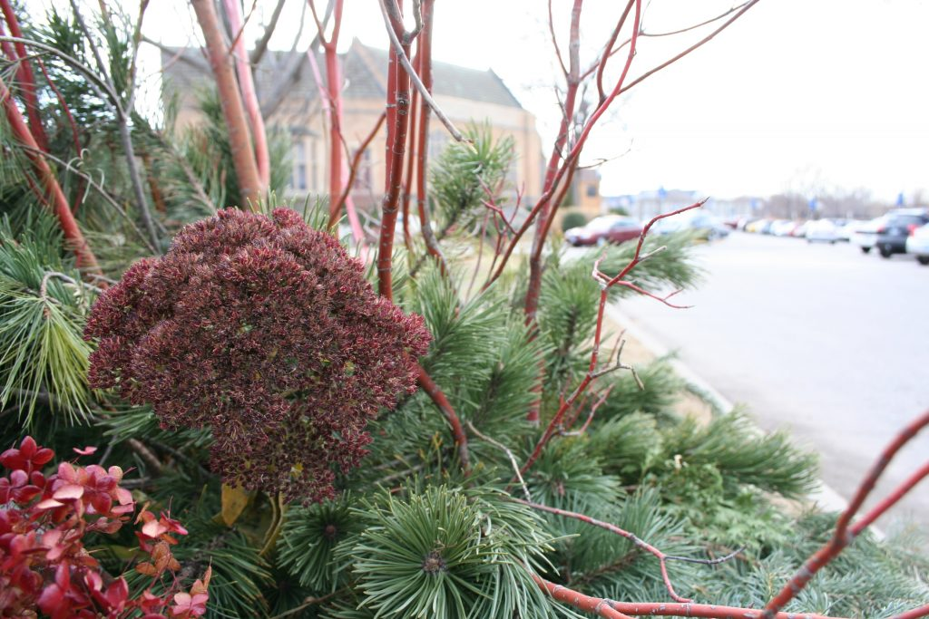 Holiday decor can include a variety of natural or artificial materials.