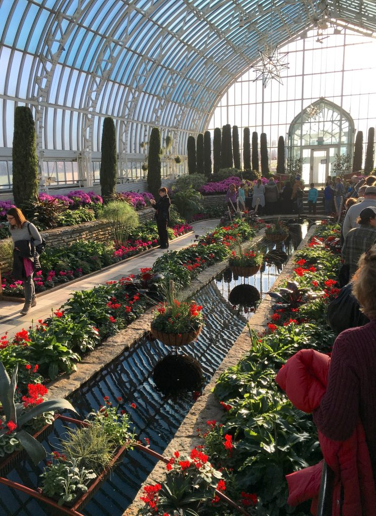 Como Conservatory Winter Flower Show Minnesota State Horticultural Society