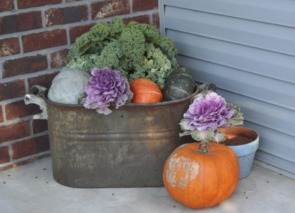 Fall Decor Ideas Minnesota State Horticultural Society