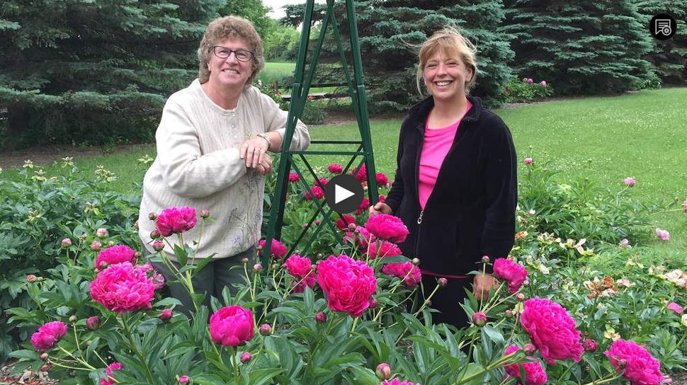 Gardening Tv Shows Us Garden Ftempo