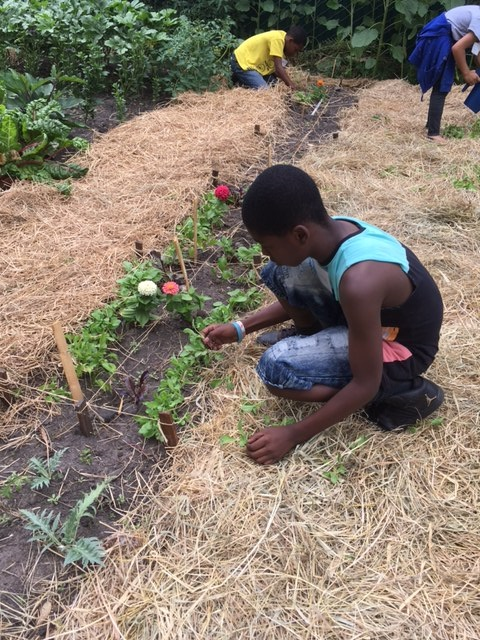 weeding in children's garden