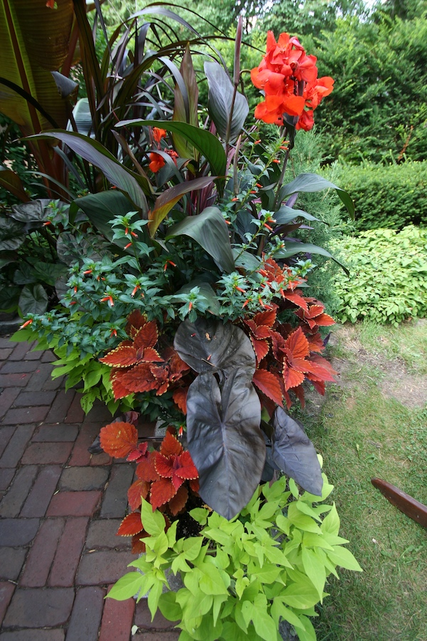 container with orange annuals