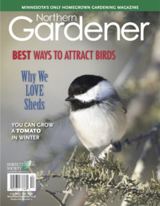 NGCover-nd18-web
