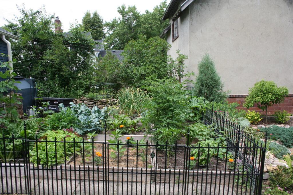 garden planning garden class