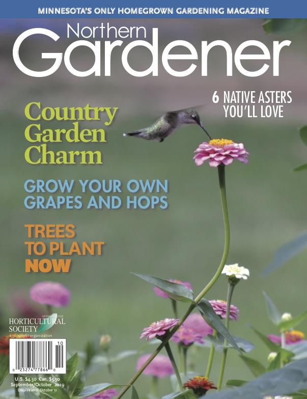 City Garden, Country Garden: New Northern Gardener ... on