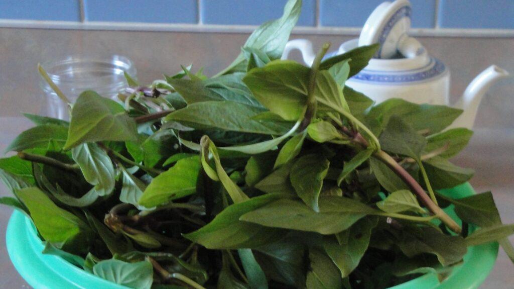 herbal simple syrup thai basil