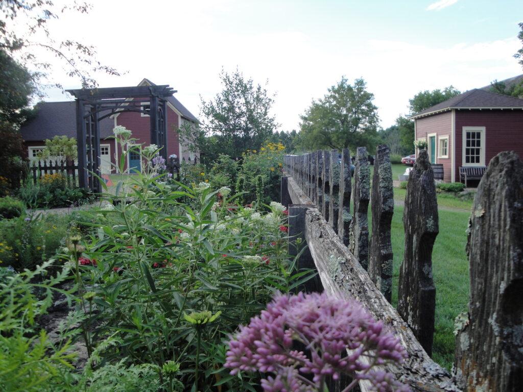 Lynn Steiners garden