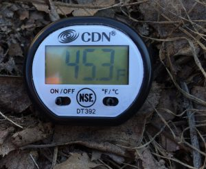 Soil thermometer