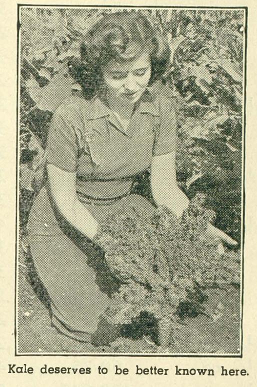 victory garden kale