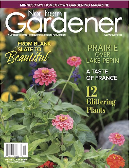 summer northern gardener