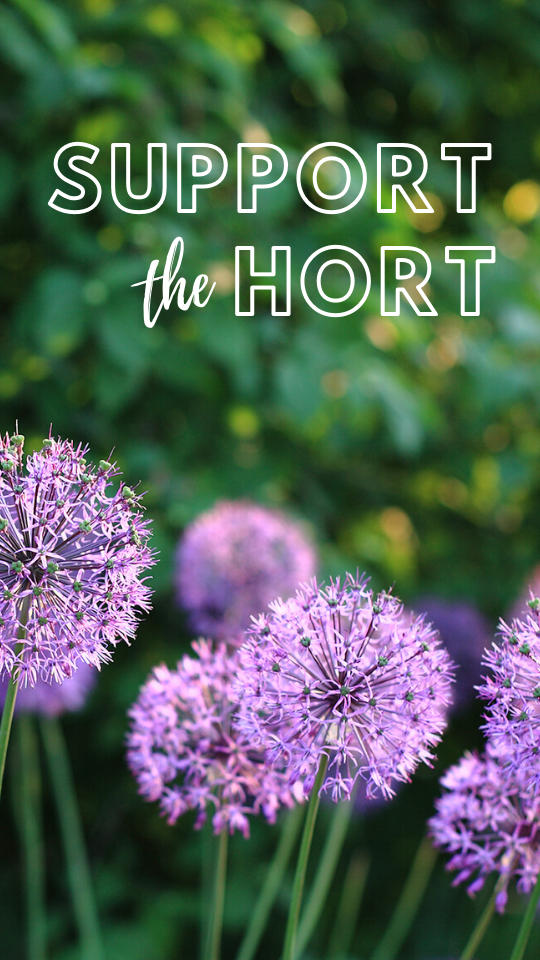 support the hort