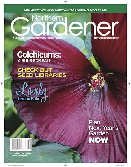 Northern Gardener cover with hibscus flower