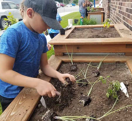 child planting with master gardeners