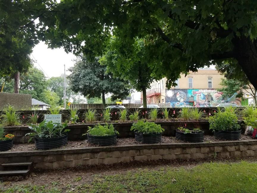 Garden boxes at wilder center