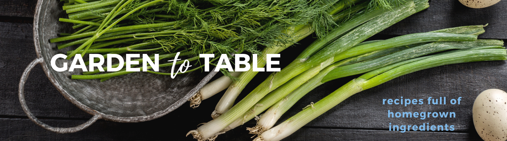 garden to table web banner