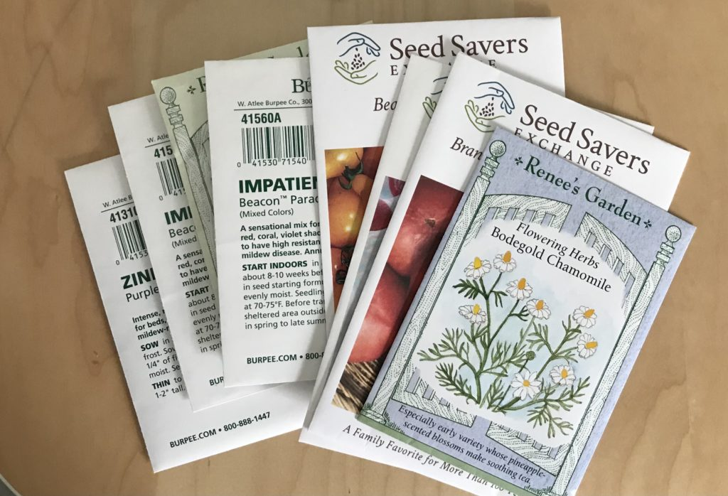ordering seeds is a february garden chore