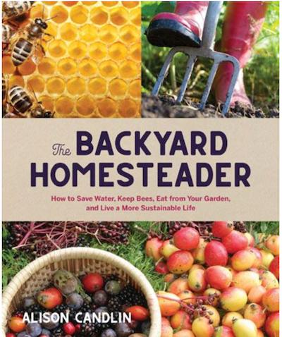 backyard homesteader cover