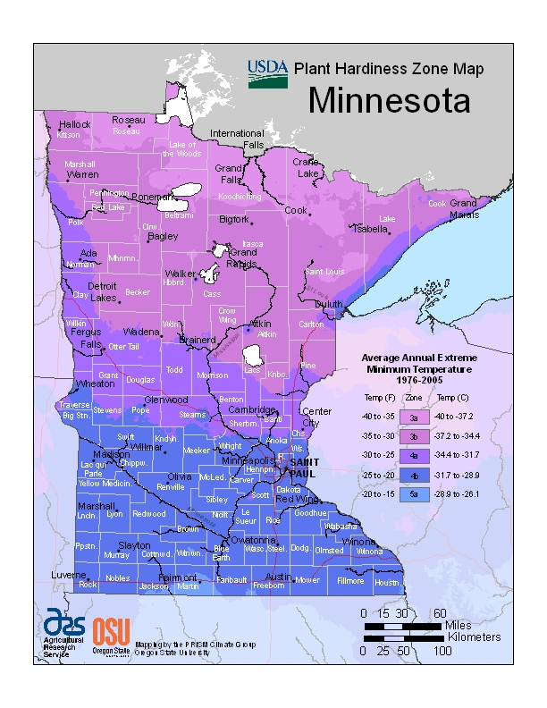 Minnesota hardiness zone map