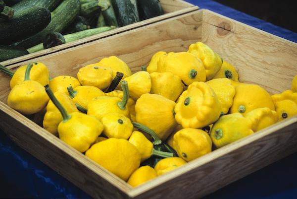 basket of yellow patty pan summer squash