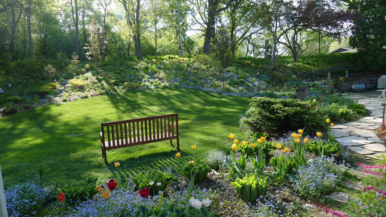 watch the light in your garden scene
