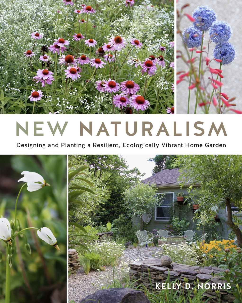 cover of new naturalism book