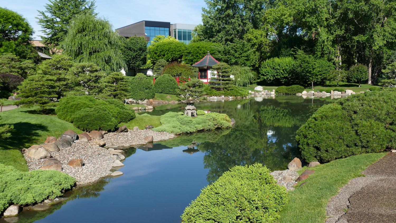 normandale japanese garden in summer