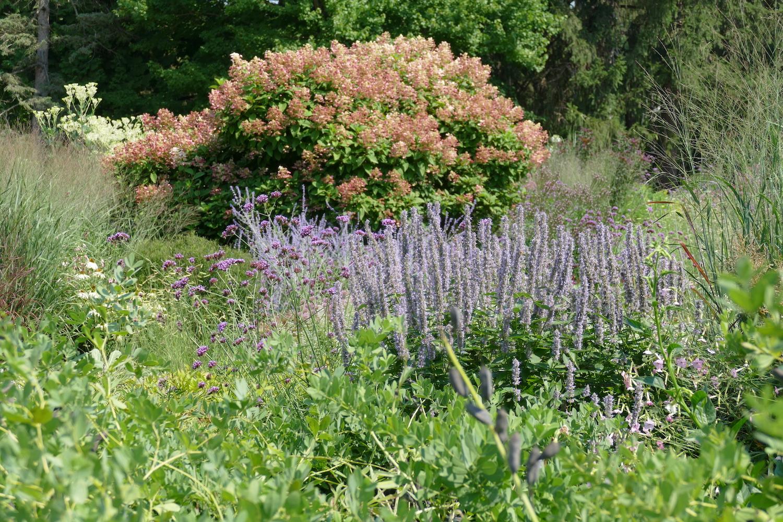 noerenberg garden scene